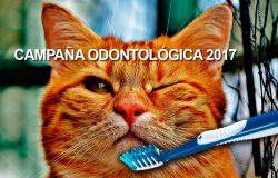 campaña-odontologica-2017